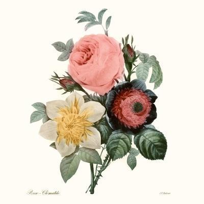 Blushing Bouquet II