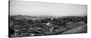The Rock Desert by Piet Flour