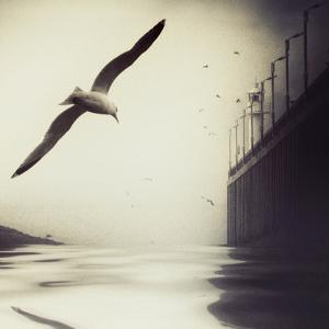 The Tide by Piet Flour