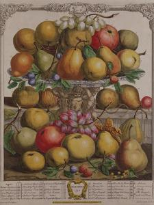 December, from 'Twelve Months of Fruits' by Pieter Casteels