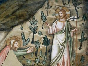 Scenes from the Life of Mary Magdalen: Noli Me Tangere by Pietro Cavallini