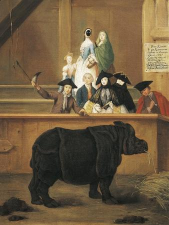 Exhibition of Rhino, 1751