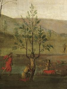 Tree-Woman, Detail of Struggle Between Love and Chastity, 1503-1505 by Pietro Perugino