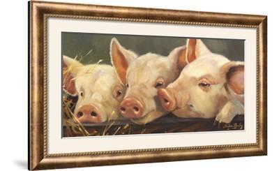 Pig Heaven-Carolyne Hawley-Framed Photographic Print