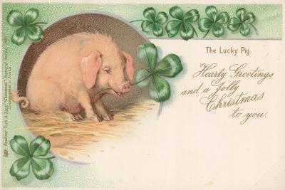 Pig in Clover--Giclee Print