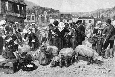 Pig Market, Pyrenees--Photographic Print