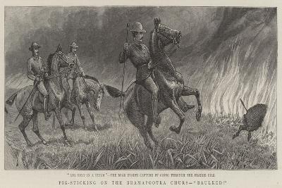 Pig-Sticking on the Bramapootra Churs, Baulked--Giclee Print