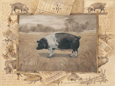 Pig-Anita Phillips-Art Print
