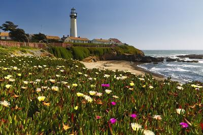 Pigeon Point Spring Vista, California-George Oze-Photographic Print