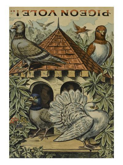 Pigeon vole--Giclee Print
