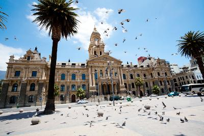 Pigeons Flying over City Hall of Cape Town, South Africa-michaeljung-Photographic Print