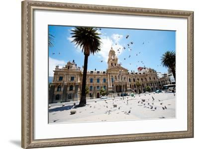 Pigeons Flying over City Hall of Cape Town, South Africa-michaeljung-Framed Photographic Print