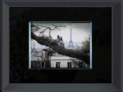 Pigeons in Paris--Home Accessories
