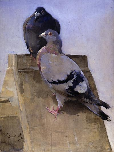 Pigeons on the Roof-Joseph Crawhall-Giclee Print