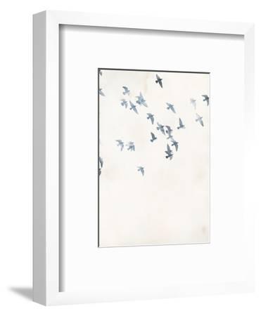 Pigeons Sky-Design Fabrikken-Framed Art Print