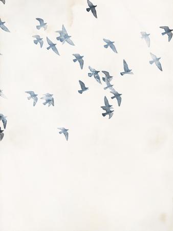 https://imgc.artprintimages.com/img/print/pigeons-sky_u-l-q1g6bm50.jpg?p=0