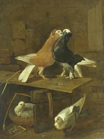 https://imgc.artprintimages.com/img/print/pigeons_u-l-puo1w00.jpg?p=0