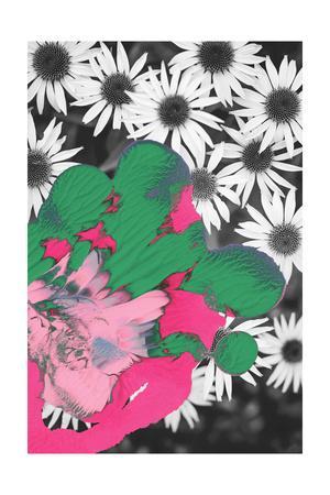 https://imgc.artprintimages.com/img/print/pigment-smudge-daisies_u-l-q12rgtg0.jpg?p=0