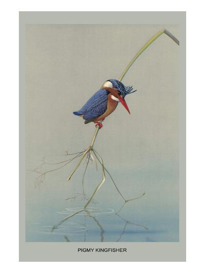 Pigmy Kingfisher-Louis Agassiz Fuertes-Art Print