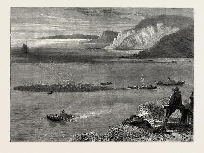 Pilchard Fishing of the Lizard, the South Coast, UK, 19th Century--Giclee Print