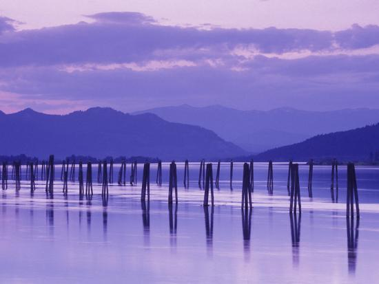 Pilings Reflecting in Calm Water, Pend Oreille River, Washington, USA-Jamie & Judy Wild-Photographic Print