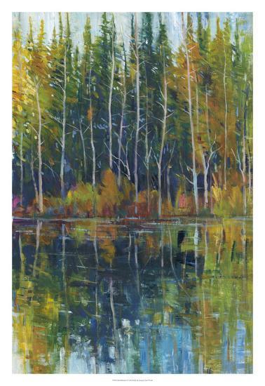 Pine Reflection I-Tim OToole-Premium Giclee Print