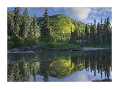 Pine River, Hart Ranges, British Columbia, Canada-Tim Fitzharris-Art Print