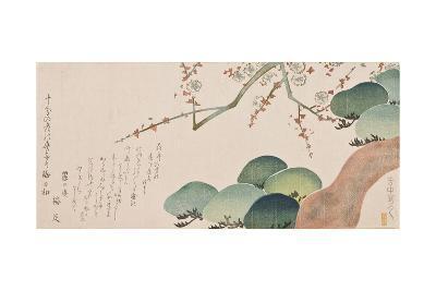 Pine Tree and Plum Blossom, 1810-30-Nakamura Hochu-Giclee Print