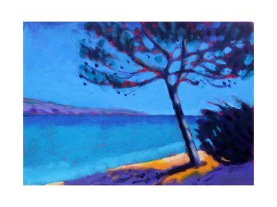 Pine Trees-Sara Hayward-Giclee Print