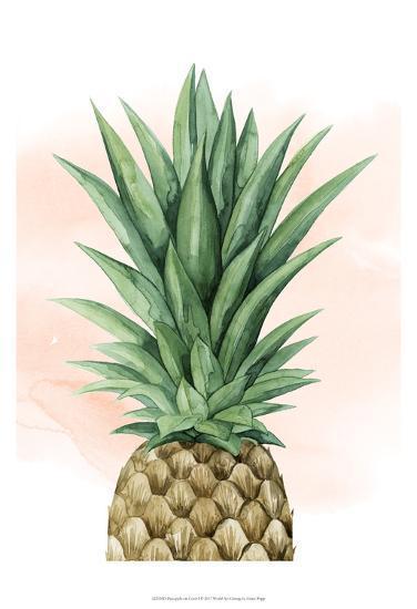 Pineapple on Coral I-Grace Popp-Art Print