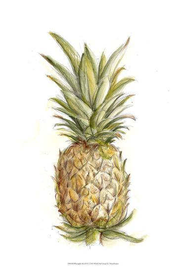 Pineapple Sketch II-Ethan Harper-Art Print