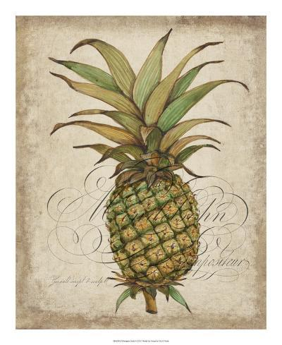 Pineapple Study I-Tim OToole-Art Print