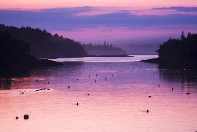 Pink and Purple Sunlight on the Water at Sunset-Jonathan Irish-Photographic Print
