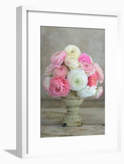 Pink and White Ranunculus in Floral Arrangement-Georgianna Lane-Framed Photographic Print