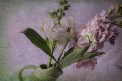 Pink and White Stock-Bob Rouse-Giclee Print