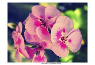 https://imgc.artprintimages.com/img/print/pink-blossom-ii_u-l-f8052q0.jpg?p=0