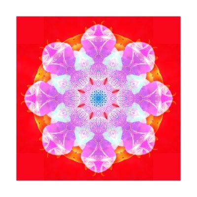 Pink Blossom Mandala Circle-Alaya Gadeh-Art Print