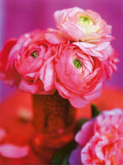 Pink Bouquet-Pernilla Bergdahl-Art Print
