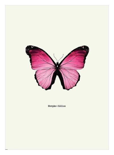 Pink Butterfly-GraphINC-Art Print