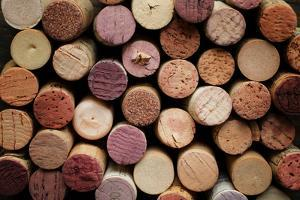 Close up of a Cork Wine with Different Variation of Wine Color by pink candy