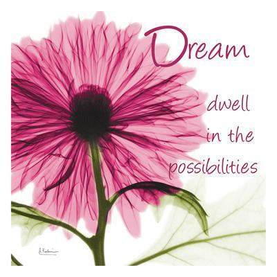 https://imgc.artprintimages.com/img/print/pink-chrysanthemum-dream-2_u-l-f90ac20.jpg?p=0