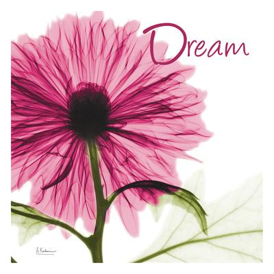 https://imgc.artprintimages.com/img/print/pink-chrysanthemum-dream_u-l-f90ac10.jpg?p=0
