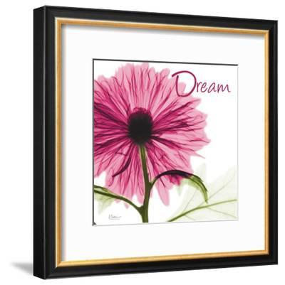 Pink Chrysanthemum Dream-Albert Koetsier-Framed Art Print