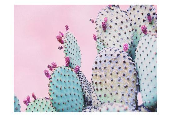 Pink Crush VI-Elizabeth Urquhart-Art Print