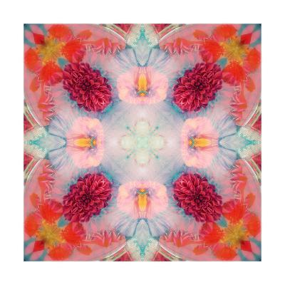 Pink Delicateness-Alaya Gadeh-Art Print
