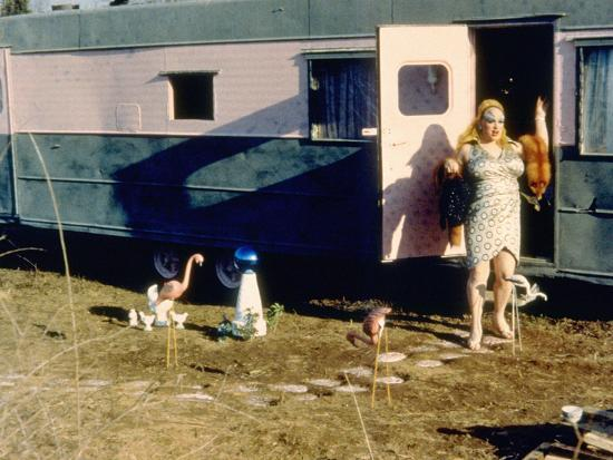 Pink Flamingos, Divine, 1972--Photo