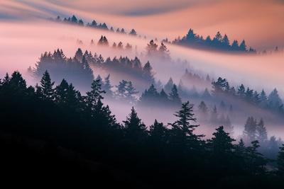 https://imgc.artprintimages.com/img/print/pink-fog-flow-sunset-mood-and-flow-marin-county-san-francisco_u-l-q12ywrf0.jpg?p=0