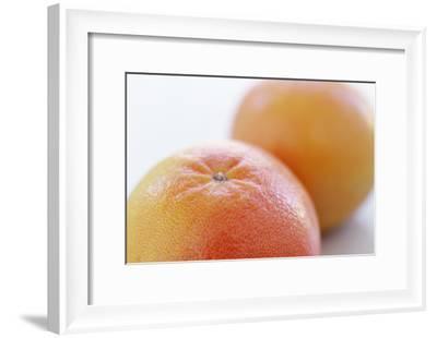 Pink Grapefruits-David Munns-Framed Photographic Print
