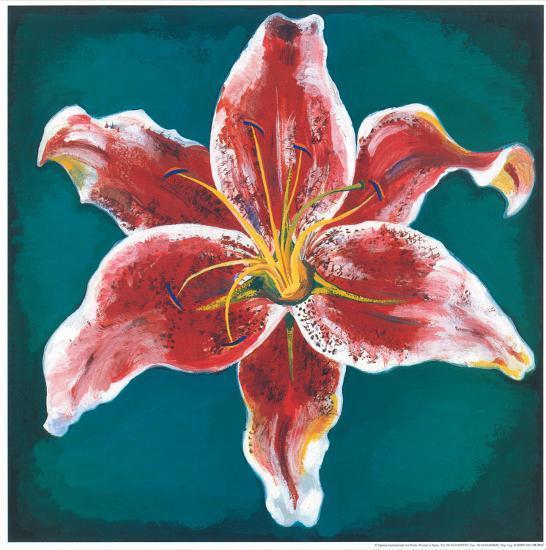 Pink Lily-Urpina-Art Print