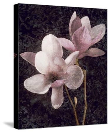 Pink Magnolias I-John Seba-Stretched Canvas Print